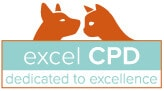 Excel CPD